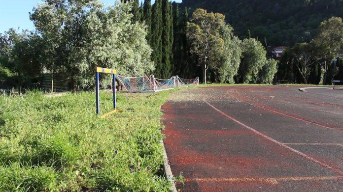 campo zaccari